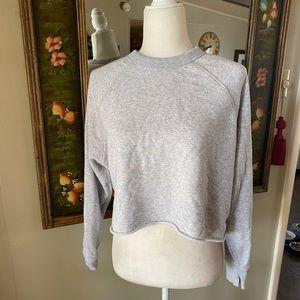 Aerie Cropped Distressed Grey Sweatshirt
